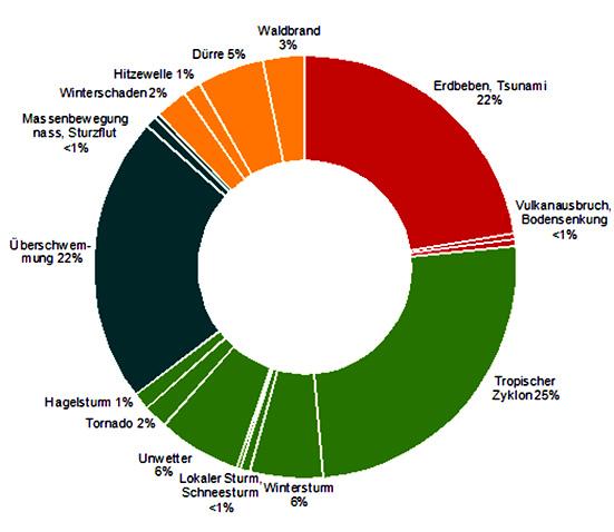 Anteile verschiedener Arten von Naturkatastrophen im Zeitraum 1980–2010 an Gesamtschäden in Werten von 2010