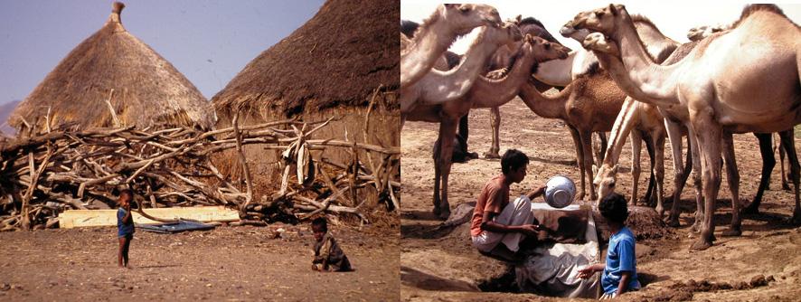 Die Wasserknappheit verschärft sich in den meisten ariden und semi-ariden Regionen